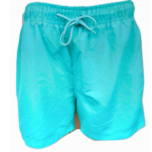 Šviesūs žali vyriški trumpi šortai CEDARWOOD STATE, dydis XL
